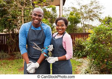 álló, kert, párosít, amerikai, afrikai, otthon