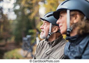 álló, sisak, bicikli, párosít, autumn., liget, szabadban, idősebb ember