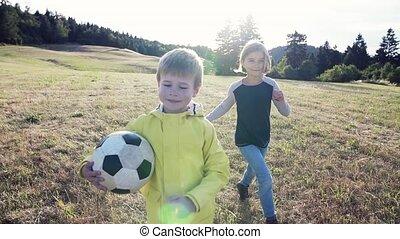 álló, természet, mező, gyermekek játék, elgáncsol, ball.,...