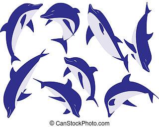 állat, delfinek