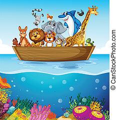 állatok, csónakázik, tenger