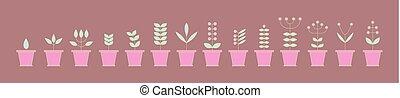 állhatatos, illustration., elements., természet, eco, collection., virágcserép, icons., növényvilág, vektor, signs.