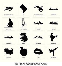 állhatatos, közül, karate, megrúg, ajkak, shih tzu, pittsburgh, cincinnati, boszton, lord shiva, tetthely, test, test, ikonok