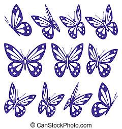 állhatatos, közül, pillangók