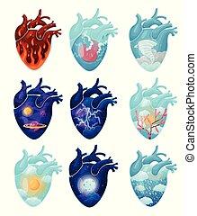 állhatatos, természetes, belső, jelenség, ábra, háttér., vektor, arcmás, heart., fehér