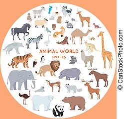 állhatatos, vektor, állat, világ, fajok, illustrations.