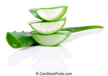 áloe, encima, leaf., aislado, vera, fresco, blanco