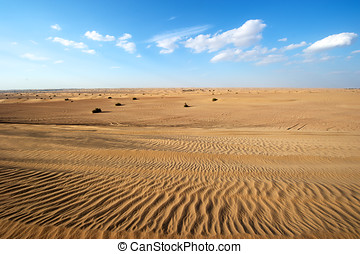 árabe, dubai, unido, emiratos, desierto