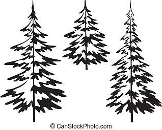 árbol abeto, navidad, contornos