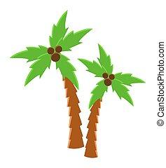 árbol, aislado, ilustración, grows, palma, blanco, coco, vector, verde, fondo., tropical