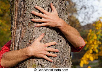 árbol, alrededor, manos