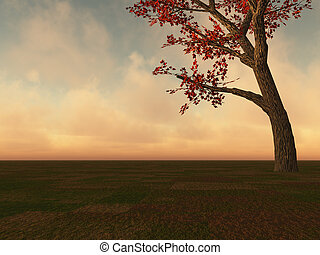 árbol, arce, horizonte, otoño