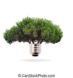 árbol, bombilla, concepto, de, limpio, y, energía renovable