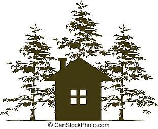 árbol, cedro, hogar