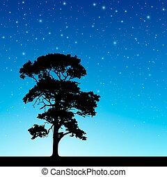 árbol, con, cielo de la noche