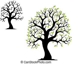 árbol, con, leafs