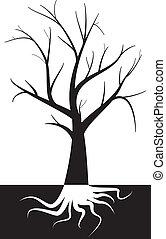 árbol, con, raíz