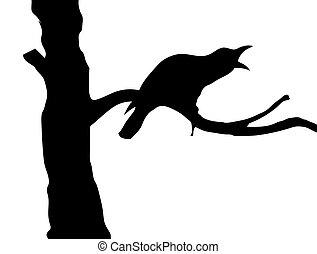 árbol, cuervos, vector, silueta, rama
