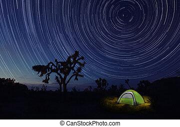 árbol de joshua, parque, campamento, noche