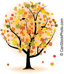 árbol del arce, hoja otoño, fall.