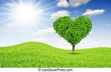 árbol, en, el, forma, de, corazón