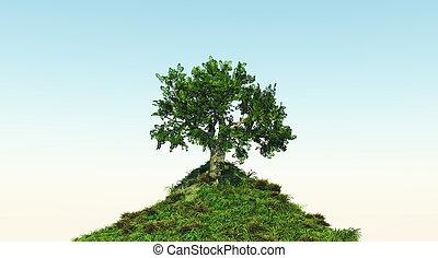 árbol, en, herboso, colina