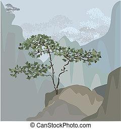 árbol, en, un, montaña, repisa