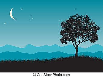 árbol, escena, noche