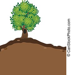 árbol, follaje exuberante