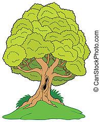 árbol frondoso, en, colina