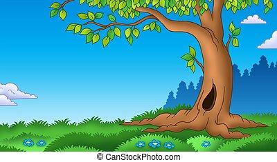 árbol frondoso, herboso, paisaje