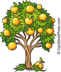 árbol frutal, aislado