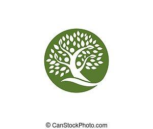 árbol genealógico, logotipo, diseño, plantilla