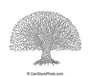 árbol grande, con, raíces, para, su, diseño