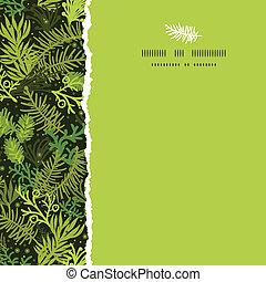 árbol hoja perenne, cuadrado, patrón, marco, rasgado, árbol...