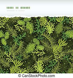 árbol hoja perenne, patrón, marco, rasgado, árbol, seamless...