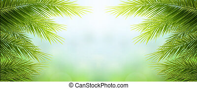 árbol, hojas, cielo, palma, natural, concept:, día, tierra verde