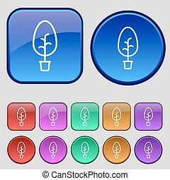 árbol, icono, signo., un, conjunto, de, doce, vendimia, botones, para, su, design., vector