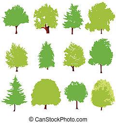 árbol, iconos