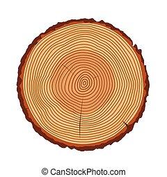 árbol llama, aislado, textura, vector, tronco