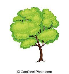 árbol, muebles, crudo, tronco, material, de madera, vector, ...