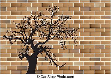 árbol muerto, en, pared