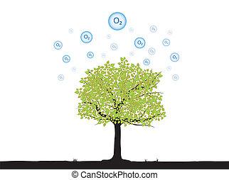 árbol, oxígeno