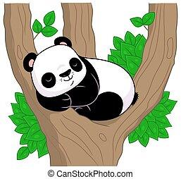 árbol, panda, duerme
