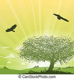 árbol, pasto o césped, paisaje