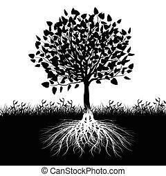 árbol, raíces, silueta