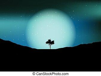 árbol, silueta, contra, un, cielo de la noche, 1105