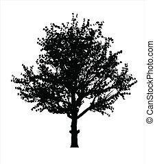árbol, silueta, manzana, rojo