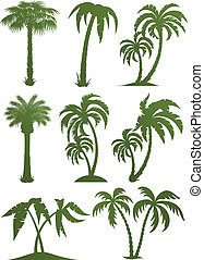 árbol, siluetas, conjunto, palma