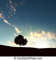 árbol, solo, ocaso